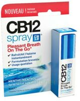 CB 12 Spray haleine fraîche 15ml à NOYON