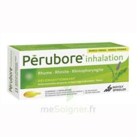 PERUBORE Caps inhalation par vapeur inhalation Plq/15