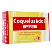 COQUELUSEDAL ADULTES, suppositoire à NOYON