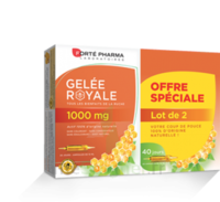 Forte Pharma Gelée royale 1000 mg Solution buvable 2*B/20 Ampoules/10ml à NOYON