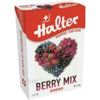 Halter sans sucre Bonbon fruits rouges 40g à NOYON